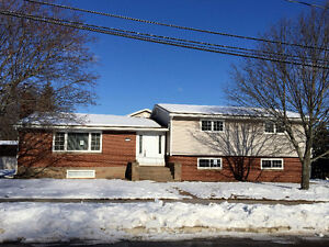 OPEN HOUSE SUN MAR 26 2-4  -4 level split 119 Noel St Moncton NB