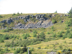 46 CHIPMAN'S ROAD, SPANIARD'S BAY St. John's Newfoundland image 7