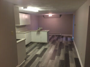 *BEAUTIFUL RENOVATED 3BRM APT. CENTRAL MONCTON (HEAT & LIGHTS!)*