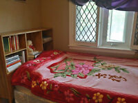 Twin bed, mirror, dresser - Glebe area - Pick up only