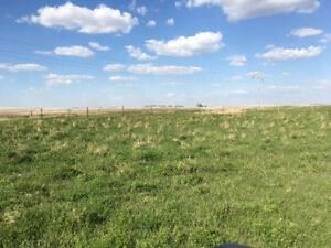 Serviced Land for Sale