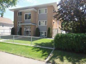 PERFECT FOR YOUR 1ST PLACE - ONE BEDROOM - 1 FREE MONTH INCENTIV