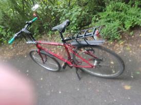 Bike. Bicycle