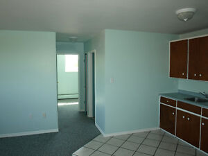 SPACIOUS 1 BEDROOM APT IDEAL FOR YOUNG PROFESSIONAL OR COUPLE