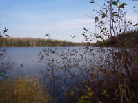 waterfront forested lot near Cochrane ON