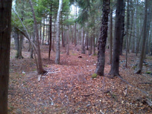 SANDY POINT ROAD - HUGE WOODED LOTS