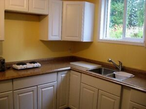 Fruitvale, newly renovated 2 bedrooms siute, shared laundry