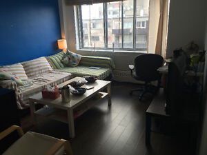 Bright and Clean 3 1/2 downtown McGill All inclusive