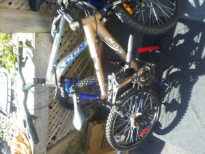 2 ccm mountain bikes