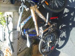 2 ccm mountain bikes
