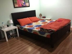 Nice and Clean 1 Bedroom Basement near Mt Pl Go Stn.