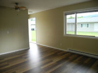 Level entry, renovated one bedroom condo for rent in Enderby