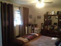Room for rent in large centrally located professional home.