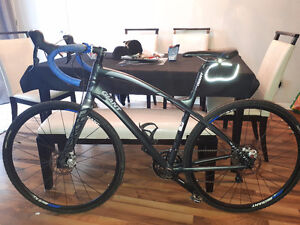 Giant ANYROAD 2015 Super condition (NEGO)