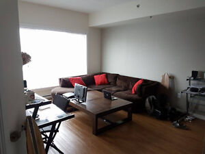 Close to U of M - Large 1 bedroom apartment - Sublease