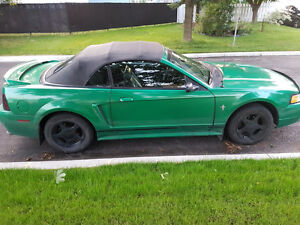 2000 Ford Mustang Cabriolet décapotable