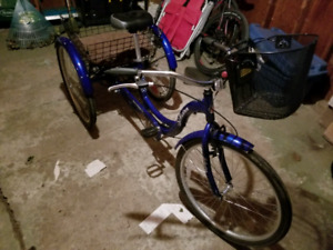 Schwinn Tricycle w/ seat upgrade