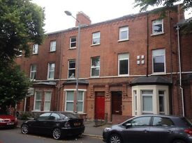 Double room in bright city centre apartment - sharing with 2 professionals