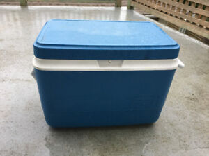 Picnic Ice Cooler