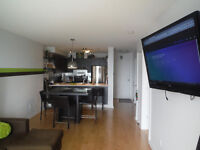 Fully furnished 1bdr Condo - $950/month- Montreal- Triangle