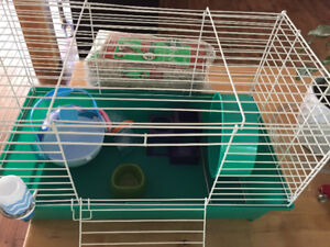 Hamster/ gerbil / Rat / enclosure with accessories