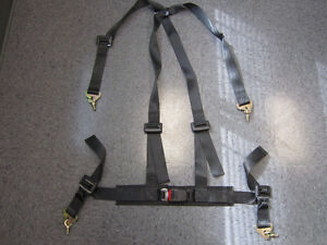 Racing Harness (4 point)