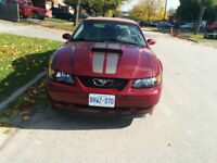 2004 40th Anniversary Edition Ford Mustang Convertible