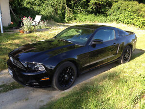 2014 Ford Mustang Premium Coupe Coupe (2 door)