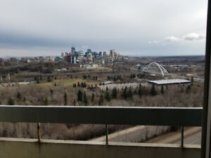 Furnished apartment on Sask Drive - AMAZING VIEW!!