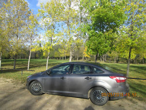 2014 Ford Focus Other