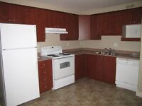 UTILITIES INCLUDED Beautifull  apt. Riverview 1/2 PRICE RENT