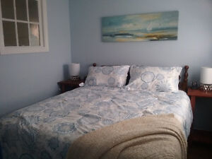 Sun Dew Cottage - Summer Rental - Lake Centre, NS