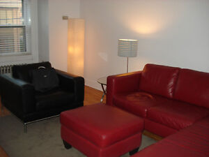 Furnished Downtown 2nd Floor Apartment