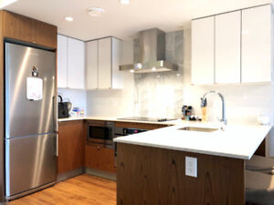 Pet Friendly Furnished 1 Bedroom Condo in Olympic Village