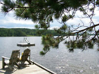 Beautiful Lakefront Cabin in Kenora area