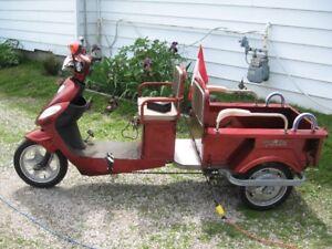 3 wheel elctric 48V trike