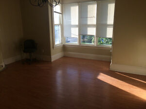 Downtown - 1 bedroom and a large 2 bedrooms