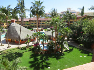 CABO SAN LUCAS CONDOS FOR RENT