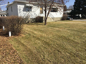 Calgary's Best Spring Clean-Ups. From $120!