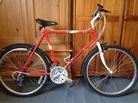 Lovely 1980's Peugeot mountain bike