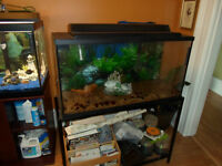 35 Gallon fish tank with stand. 3 Other tanks also!