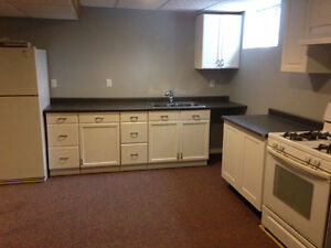 Newly Renovated 2 Bedroom Apartment for Rent in Beamsville
