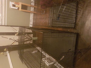 Dog crates - Jumbo $125; Large $80