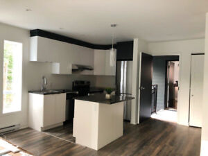 New Condo Apartments for rent -CLOSE TO GLEN