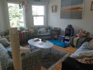 Roommate Wanted September 1st - Apartment Near Commons