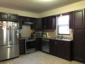 Kitchen Cabinets, Countertops, Sink & Faucet