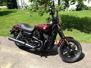 2015 Harley Davidson Street for sale
