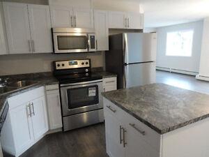 NEW!!  HUGE 1 Bedroom+Den Condo @ Clareview LRT