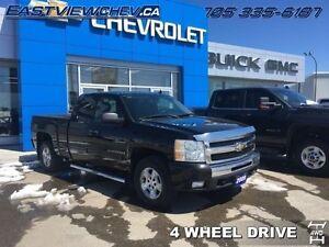 2009 Chevrolet Silverado 1500 WT