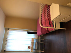 1 bedroom available for working female/matured student